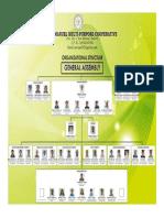 Organizational Chart 2019