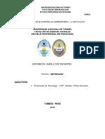 Informe de Charla Pacientes Depresion Faltan Anexos