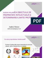 Subiectul 7 Identificarea OPI Și Determinarea Limitei Protecției