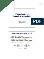 ComunicacionCelular I