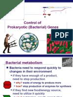 BacterialGeneControl-LacOperon2008(KF)