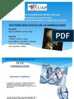 328556215-Factores-Biologicos-de-La-Criminalidad-Diapo.pptx