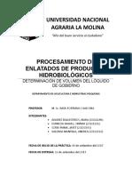 Informe 4 - Determinación de Volumen Del Lóquido de Gobierno