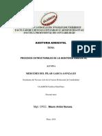 ACTIVIDAD N° 07 PROCESOS ESTRUCTURALES DE LA AUDITORIA AMBIENTAL
