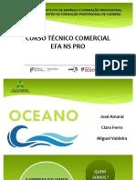 Apresentação Final - Tecnico Comercial - IEFP PEDRULHA 2019
