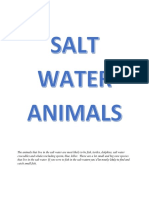 The Animals That Live in the Salt Water Are Most Likely to Be Fish