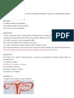 Questões sobre a reprodução humana - Prof. Adão Marcos Graciano