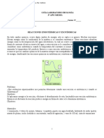 Laboratorio Reacciones Endotérmicas y Exotérmicas