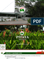 Agroecosistemas II. Seminario -Pitaya