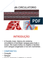 Sistema Circulatorio Geoooo