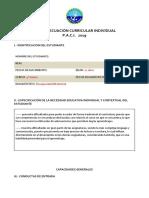 Copia de FORMATO PACI 2018.docx