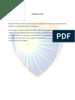 Trabajo Investigacion Contable-Delimitaciones iva