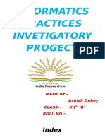 253971841 Ip Investigatory Project