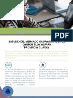 Estudio de Mercado Ocupacional Unidad Duran...