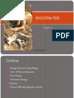 Chap 4 Biocatalysis New