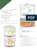 Bio-lab-5-7.pdf