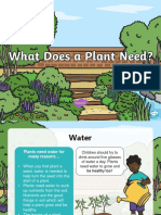 t-sc-409-what-does-a-healthy-plant-need-powerpoint ver 3