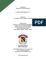 informe hidráulica 1
