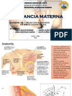 EXPOSICION NEONATOLOGIA LACTANCIA MATERNA.pptx