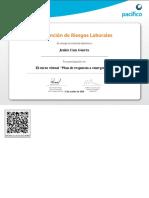 Plan de Respuesta a Emergencias-Ver Certificado 106090