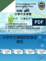2 小学华文课程的发展和演变.pptx