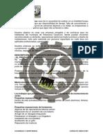 Plan de Negocio Multiservicios Express