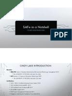 cindy_lake_safe_in_a_nutshell.pdf