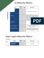 Agile Maturity