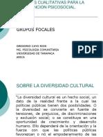 Grupos Focales 2012 PDF