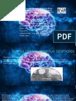 Morales_Presentacion Psicofisiologia Experimental [Autoguardado]