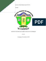 informe maldonado lopez finca 03 Tacuba.docx