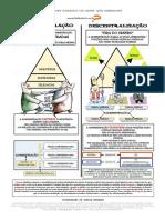 1.1 - DESCONCENTRAÇÃO X DESCENTRALIZAÇÃO.pdf