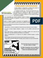 131119 Reporte Diario SSO