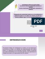 Presentacion Tesis Final CD