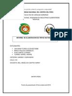 INFORME  TRIPAS NATURALES.docx