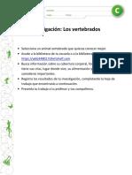 sEGUNDO BASICO INVERTEBRADOS.pdf