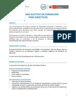 Programa para directivos
