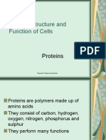 Biological Molecules - Proteins