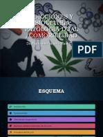 Patologias dual