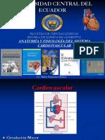 1 Sistema Cardiovascular corregido.pdf
