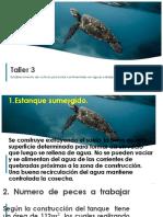 Taller 3 CULTIVO DE PISCICULTURA.pptx