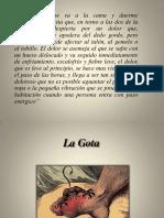 presentacingota-110726135608-phpapp02