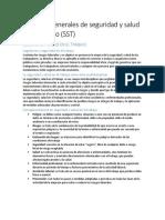 Aspectos Generales de Seguridad y Salud en El Trabajo (SST)