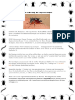 What Are the Things That Can Prevent Dengue
