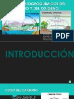 2.Ciclos BIOGEOQUIMICOS.pptx