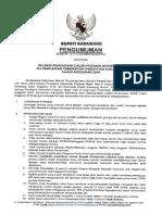 PENGUMUMAN-CPNS-KARAWANG-2019.pdf