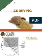 Rice Milling
