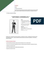 BOTONES CEREBRALES PASOS.docx