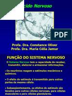 Tecido Nervoso2017.pdf