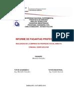 INFORME DE PASANTIAS JOSE LOYO.docx